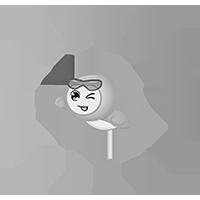 iPhone Back Protector Asahi Glass